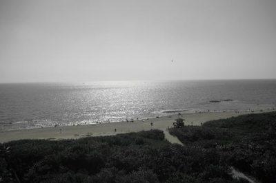 3920 N Ocean Drive #8a 1