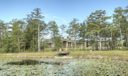9 Pond View