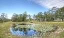 10 Pond View