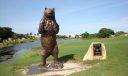 'The Bear'