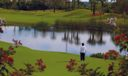BWCC Golf water