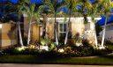 Front Garden Palms