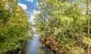 27_community-nature-walk2_132 Morning De