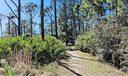 58 nature-trail
