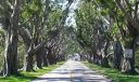 Bridge Road Hobe Sound Entrance to Beach