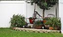 Backyard 4