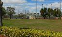 Baseball /Softball