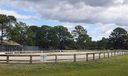 Caloosa_equestrian ring4