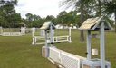 Caloosa_equestrian2