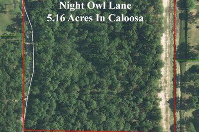 13240 Night Owl 1