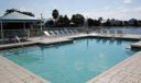 selby pool