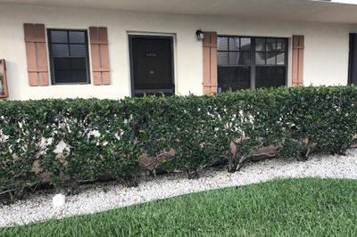 4459 Oak Terrace Drive 1