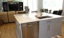 island dishwasher-sink