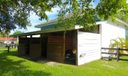 3 shady shed row stalls