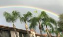 RAINBOWS OVERHEAD