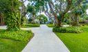 Driveway w/Banyans