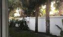 backyard better