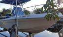 boatpic3