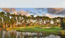 7 - Lifestyle Golf