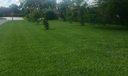 376 SCC Side yard #5 IMG_4108