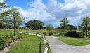 Park Walking Paths