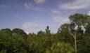 preserve view