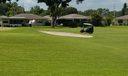 backyard golf view