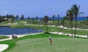 46 Palm Beach Par 3 Golf Course