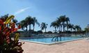 Palm Shores Pool