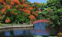 Camino Gardens park 3 AAP 2016