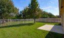 backyard1web