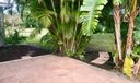Patio overlooking backyard