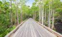 Gorgeous Trails