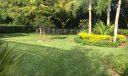 Rear yard--plenty of room for a pool.