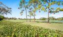 8 Wycliff Road_PGA National-33
