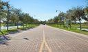 4 - Entrance Oak Trees