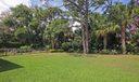 Backyard IMG_8142