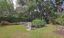 Garden IMG_8139
