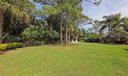 Backyard IMG_8141