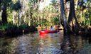 Riverbend Park - Jupiter (Thom Montrois'
