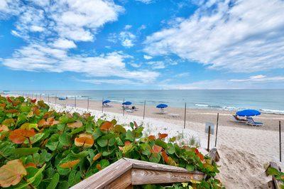 4200 N Ocean Drive #2-306 1