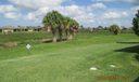 Rear Yard View (2)