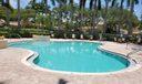 Larkspur pool