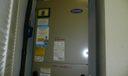 P1080394 - Copy