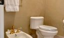Master Bathroom Water Closet