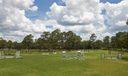 Caloosa Cross Country