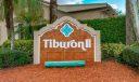 Tiburon II