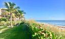 Tropical Dunes