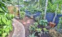 Yard Path