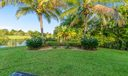 Lush Backyard Landscaping